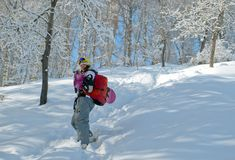 Sport women going for freeride with snowboard Royalty Free Stock Photography