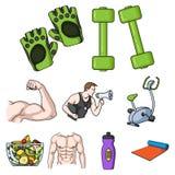 Sporta i sprawności fizycznej ustalone ikony w kreskówce projektują Duża kolekcja sporta i sprawności fizycznej wektorowy symbol  Obraz Stock