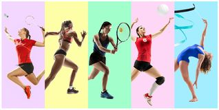 Sporta kolaż o żeńskich atletach lub graczach Tenis, bieg, badminton, rytmiczna gimnastyka, siatkówka zdjęcie royalty free