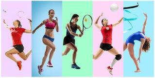 Sporta kolaż o żeńskich atletach lub graczach Tenis, bieg, badminton, rytmiczna gimnastyka, siatkówka fotografia stock
