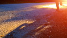 Sporta mężczyzna bieg przy asfaltową drogą Wiejski miasto park Zieleni drzewni lasu i słońca promienie na horyzoncie zdjęcie wideo