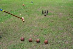 Sportar Woodball en väg att spela en sport gillar golf arkivbilder