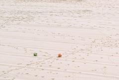 Sportbollar i sanden Arkivbild
