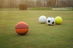 Sportbollar på gräsfält Fotografering för Bildbyråer