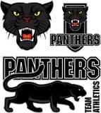Sportemblem des schwarzen Panthers des Vektors verärgertes Stockfoto