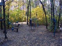 Sportengrond in het bos stock videobeelden