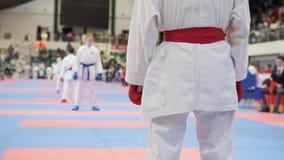 Sportenjonge geitjes - vrouwelijke sportmannen op karate - klaar voor strijd stock fotografie