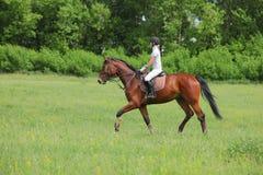 Sportenmeisje die een paard in het de zomerpark berijden Royalty-vrije Stock Afbeelding