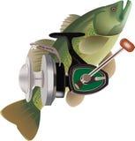 Sportfischen Lizenzfreies Stockfoto