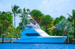 Sportfischenyacht mit üppigem tropischem Hintergrund Lizenzfreies Stockbild