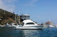 Sportfisher Yacht at Santa Catalina Island. Sportfisher yacht moored at Avalon Harbor, Santa Catalina Island.  Starboard view Royalty Free Stock Photo