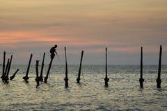 Sportfiskare på pol Royaltyfria Bilder