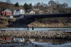Sportfiskare som fiskar i den Allegheny floden royaltyfria foton