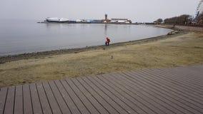 Sporthamn vladivostok Ryssland Royaltyfria Foton