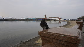 Sporthamn vladivostok Ryssland Arkivbilder