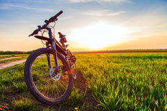 Sporting bicycle Royalty Free Stock Images