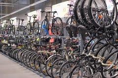 Sporting goods store bikes Stock Image