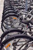 Sporting goods store bikes Stock Photography