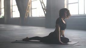 Sportive тренировка йоги девушки видеоматериал