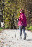 Sportive cute woman Nordic walking autumn cross country. Sportive cute mid aged female hiker Nordic walking cross country under the blue sky of the morning sun Stock Images