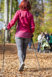 Sportive cute woman Nordic walking autumn cross country Stock Photos