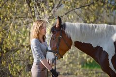 Sportive de fille et son cheval au printemps Photographie stock libre de droits