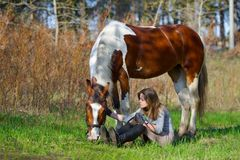 Sportive de fille et son cheval au printemps Images stock