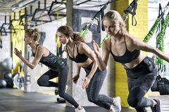 Sportive girls training in gym Royalty Free Stock Photography