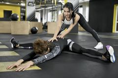 Sportive girls training in gym Stock Photography