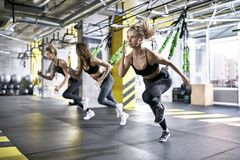Sportive girls training in gym Stock Image