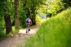 Sportive man cycling in sunny park in hot summer day. Switzerland, Europe. Sportive middle age man cycling in sunny park in hot summer day. Nice sport for active stock photo