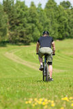 Sportive man mountain biking sunny meadows Royalty Free Stock Photography