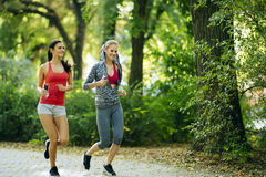 Sportive women jogging in park Royalty Free Stock Photos