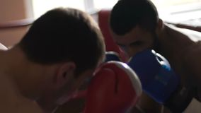 Sportive young men training boxing skills, sparring match in ring, combat sport. Stock footage stock video