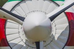 Sportives Flugzeug YAK-52 auf Anzeige während des Luftfahrt-Sportereignisses eingeweiht dem 80. Jahrestag von DOSAAF stockbild