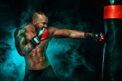 Sportivo con i tatuaggi, combattimento del pugile dell'uomo nei guanti con il punching ball di pugilato Isolato su fondo nero con immagini stock libere da diritti