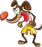 Sportivo del cane negli shorts gialli Fotografia Stock