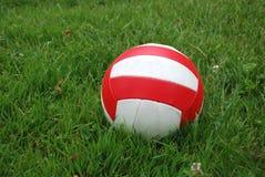 Sportkugel über dem Gras Stockfotos