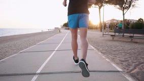 Sportler rüttelt, wenn er Zeit im Stadtpark nahe Seeküste, hintere Ansicht glättet stock video