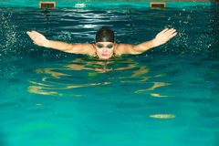 Sportlerinschwimmen-Schmetterlingsanschlag im Pool Stockfotos