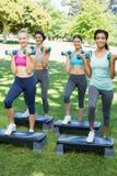 Sportliche Frauen, die Stepp-Aerobic im Park tun Lizenzfreie Stockfotografie