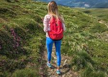 Sportliches touristisches Mädchen mit roten Rucksackaufstiegen in Berge oder in Wege, Sommer im Freien stockfotos