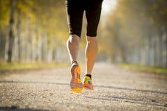 Sportmann mit dem starken Kalbmuskel, der draußen in weg von Straßenspur läuft, rieb mit Bäumen unter schönem Herbstsonnenlicht Lizenzfreies Stockfoto