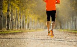 Sportmann mit dem starken Kalbmuskel, der draußen in weg von Straßenspur läuft, rieb mit Bäumen unter schönem Herbstsonnenlicht Stockfotografie