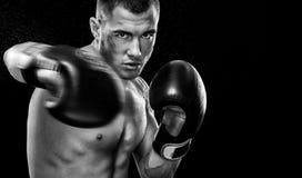 Sportowa boksera muay tajlandzki bój w rękawiczkach w bokserskiej klatce Odizolowywający na czarnym tle z kopii przestrzenią Czer Obrazy Stock
