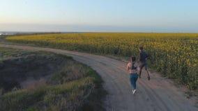 Sportowcy biegną w naturze, kilka sportowców biegnie wzdłuż drogi w pobliżu pola kwitnącego rzepaku podczas treningu kardio, wido zbiory