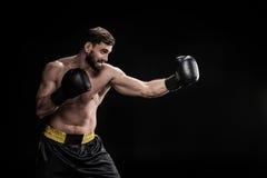 Sportowiec w bokserskich rękawiczkach Fotografia Stock