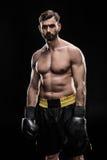 Sportowiec w bokserskich rękawiczkach Zdjęcie Royalty Free