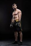 Sportowiec w bokserskich rękawiczkach Obraz Stock