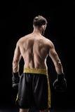 Sportowiec w bokserskich rękawiczkach Obrazy Stock